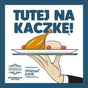 Kaczka Ratuszova Poznań